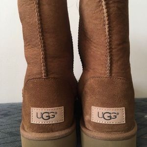 Brand New In Box Classic Brown Uggs